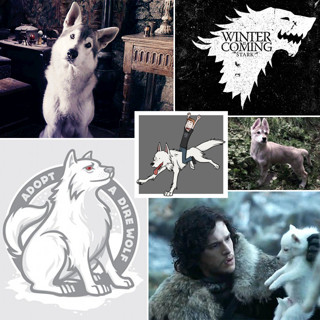 Game of Thrones Direwolf Collage
